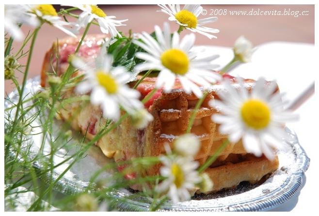 pudink vafle jahody4