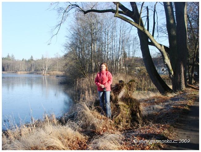 rybník u Karštejna JČ
