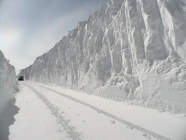 Sněhových pusinek a sněhu není nikdy dost :-)