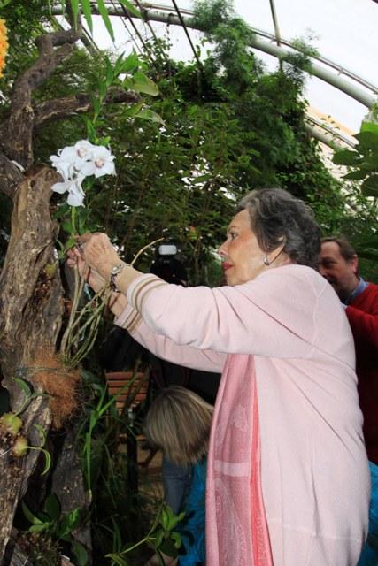Jiřina Jirásková a orchidej