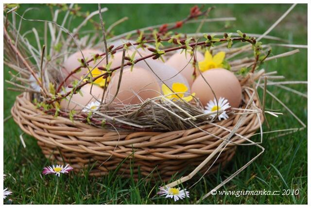 vejce v jarni trave