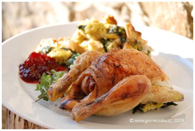 jarní kuřátka v nádivce8