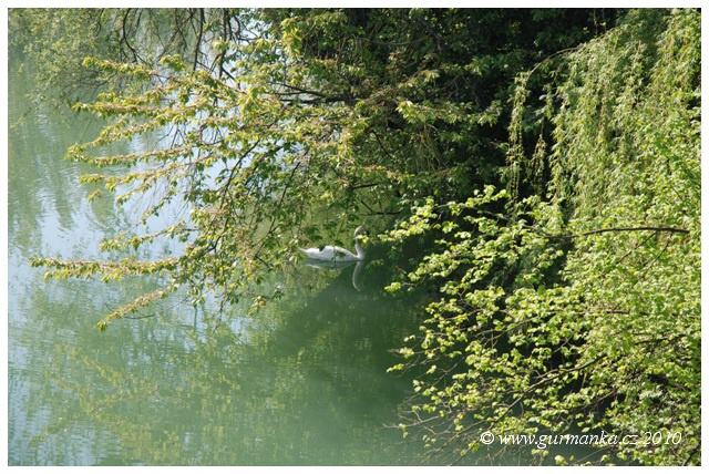 Svycarsko Dornach reka Biers