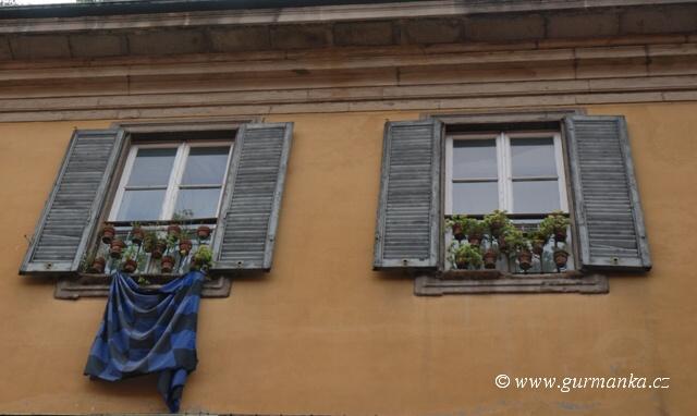 Itálie - bylinky na okně