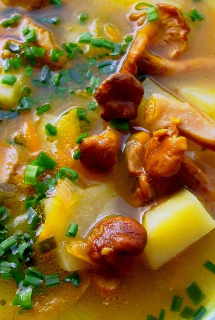 houbová polévka z lišek